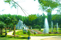 Resorts Forest Madagui